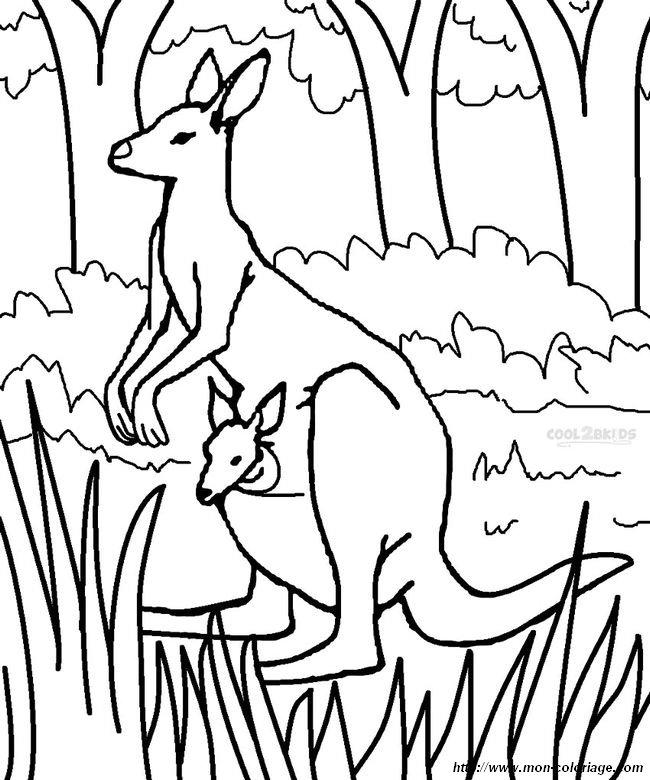 coloriage de animaux divers dessin joli kangourou dans la nature