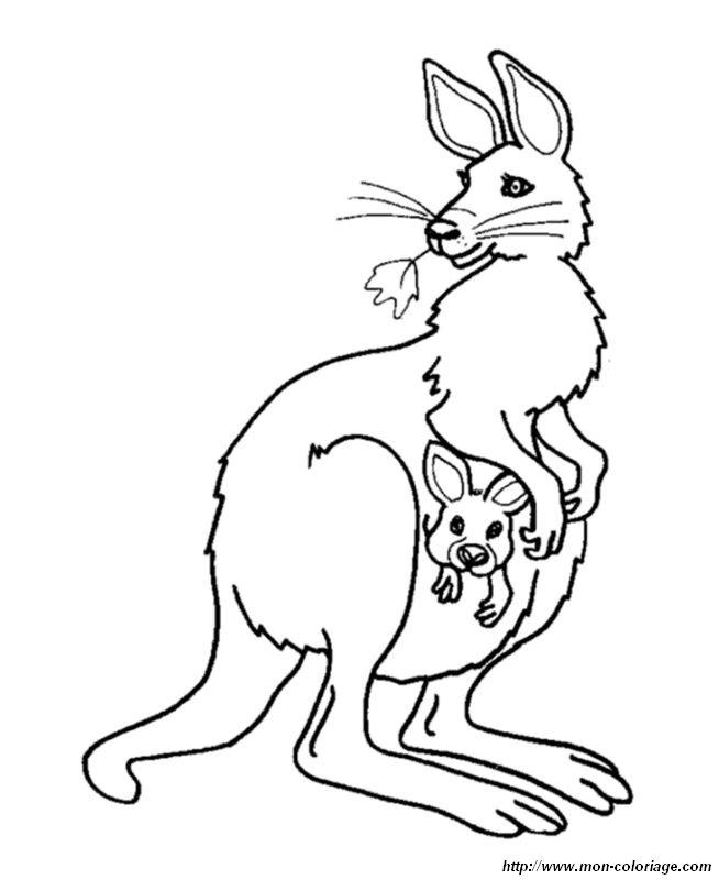 Coloriage De Animaux Divers Dessin Maman Kangourou Avec Une Feuille A Colorier