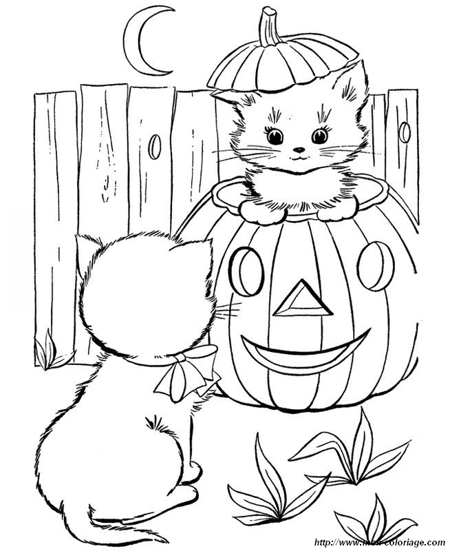 halloween pet coloring pages - photo#14