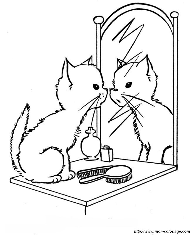 Coloriage de chat dessin devant un miroir colorier for Miroir coloriage