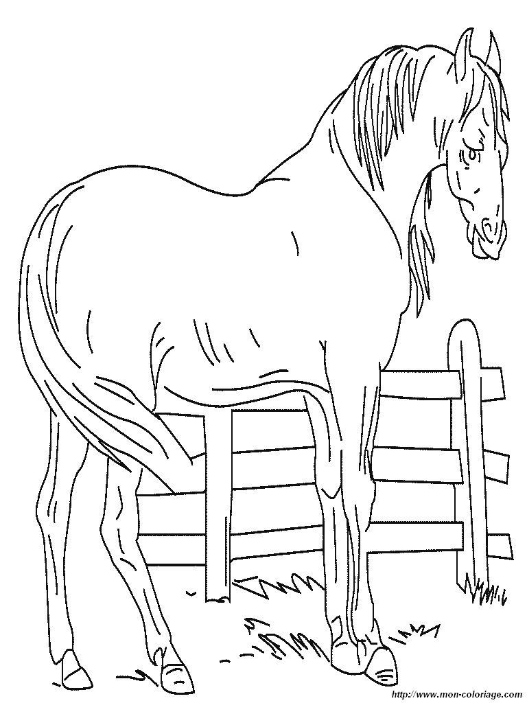 Coloriage de chevaux au galop - Coloriage de chevaux ...