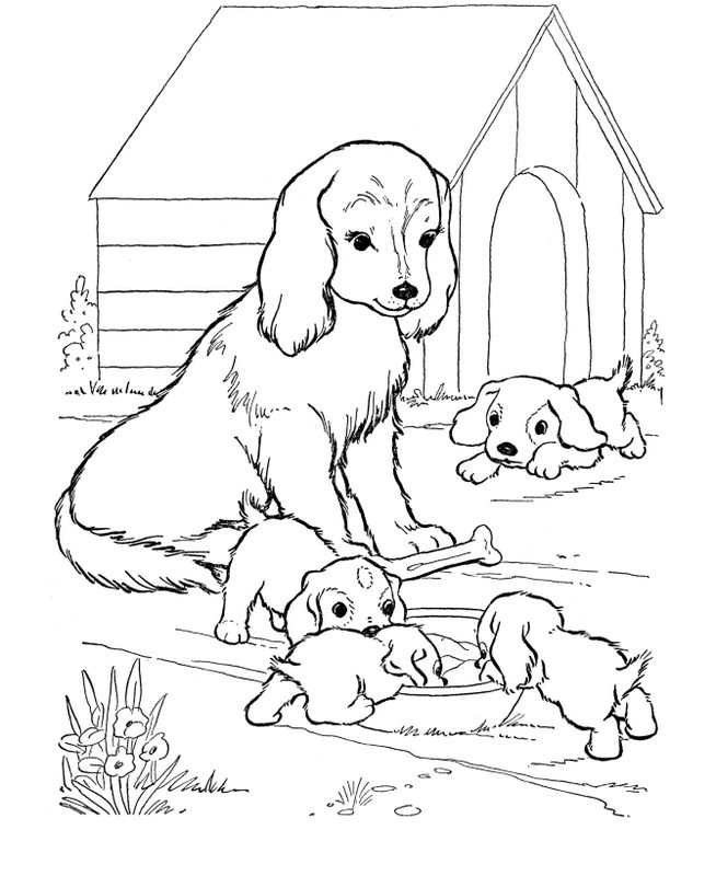 coloriage de chien, dessin la maman surveille ses chiots à