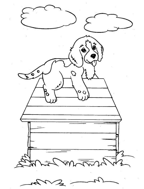 Coloriage de chien dessin sur le toit de sa niche colorier - Coloriage niche ...