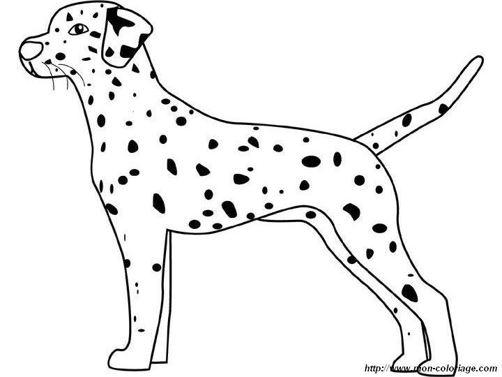 Coloriage de chien dessin le dalmatien debout colorier - Coloriage de chiot a imprimer ...