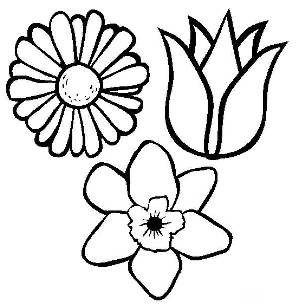 Coloriage de fleur dessin trois sortes de fleurs pour - Fleure a dessiner ...