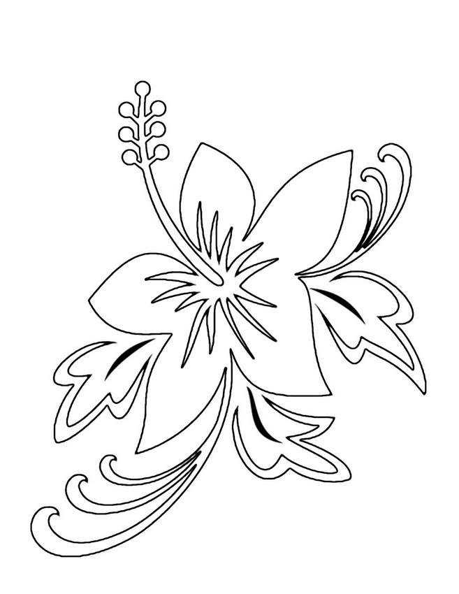 Coloriage de fleur dessin un hibiscus des tropiques - Dessin d hibiscus ...