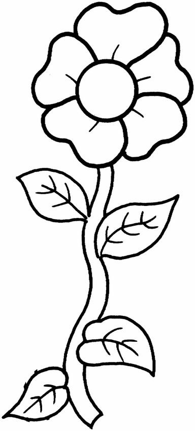 coloriage de fleur, dessin une jolie fleur à colorier