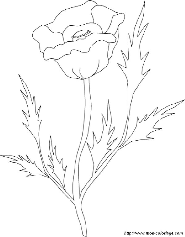 robby and mak coloring pages - photo#21