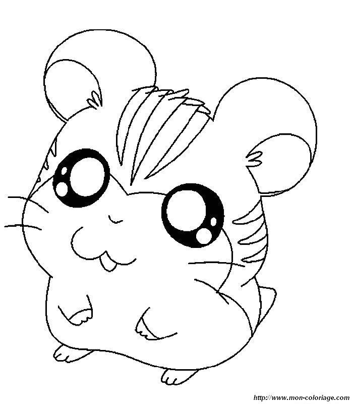 Coloriage de hamtaro dessin hamtaro colorier colorier for Cane da disegnare per bambini