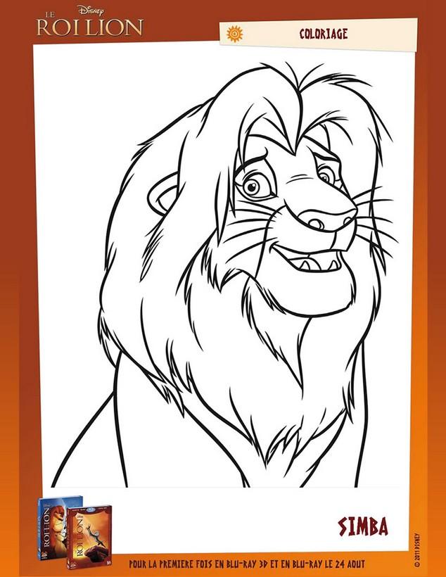 Coloriage de le roi lion dessin simba le magnifique et gentil roi lion colorier - Coloriage le roi et l oiseau ...