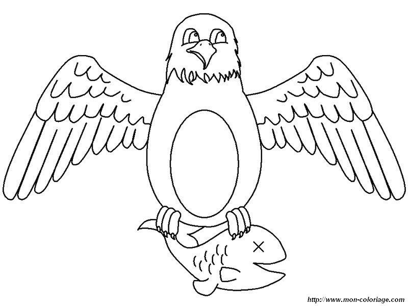 Coloriage de oiseau dessin aigle pecheur colorier - Coloriage aigle ...