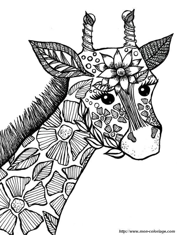 Coloriage Adulte Girafe.Coloriage De Pour Adultes Dessin Une Girafe Trop