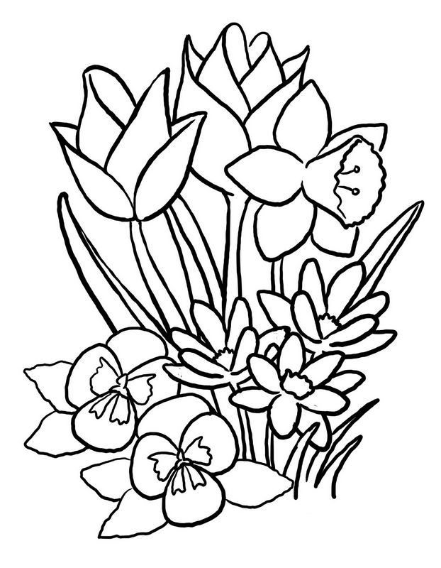 Coloriage Saison Printemps.Coloriage De Printemps Dessin Joli Bouquet De Fleurs De